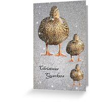 Christmas Quackers Greeting Card