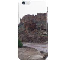Petrified Wood Base iPhone Case/Skin