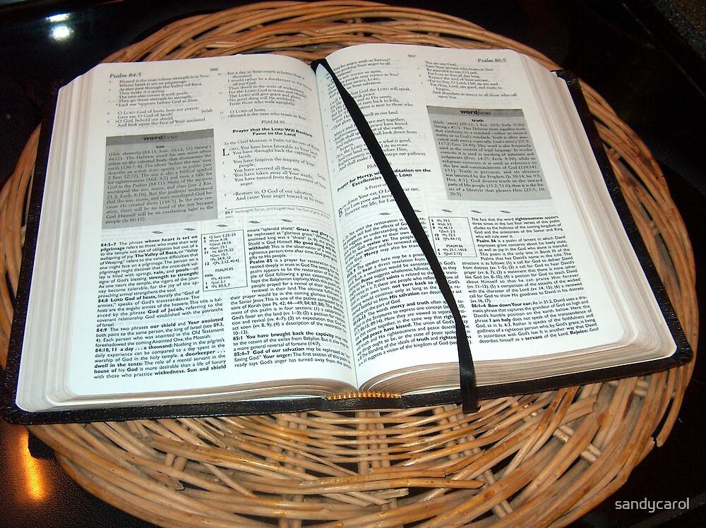 The Bible by sandycarol