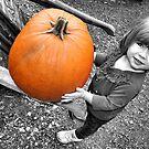 Pumpkin by Amy E. McCormick
