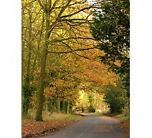 Autumn Road Home Photographic Print