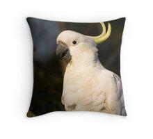 Sulphur Crested Cockatoo perching Throw Pillow
