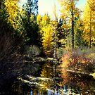 """Upper Truckee River"" by Lynn Bawden"