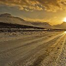 Iceland - Follow the sun by Patrycja Makowska