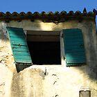 Old Window by beckett