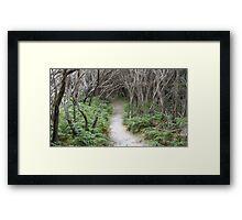 Tidal River Track Framed Print