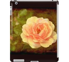 How Can You Mend a Broken Heart? iPad Case/Skin