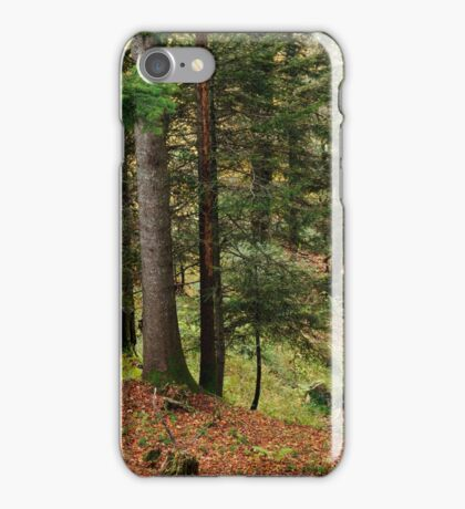 Autumn in mountain forest iPhone Case/Skin