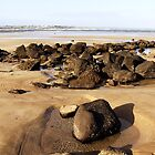 Rocky Path - Barwon Heads Bluff, Victoria, Australia by Rhonda F.  Taylor