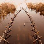 Duck Boat?  by L J Fraser