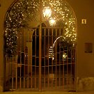 Decorated Gate by sstarlightss