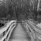 The Bridge To My Soul... by Sara Johnson