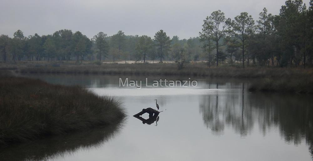 Peaceful Afternoon by May Lattanzio