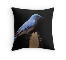 Scrub Jay - Madera Canyon, Arizona Throw Pillow
