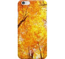 Colorful forest in Autumn iPhone Case/Skin