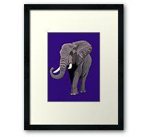 Elephant (Purple) Framed Print