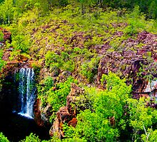 Northern Territory - Florence Falls by Geoffrey Thomas