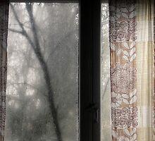 17.11.2009: November Grieve by Petri Volanen