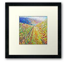 Autumn Vineyard Framed Print
