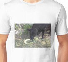 Hello Snake! Unisex T-Shirt