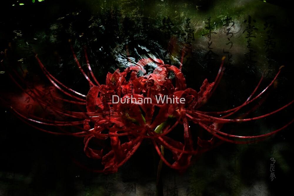 your prescription... by Durham White