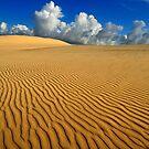 Barren plains by Anton Gorlin