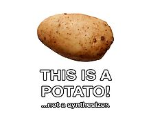 THIS IS A POTATO! ...not a synthesizer. Photographic Print