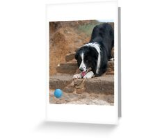 Catch It Mum! Greeting Card