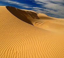 Dune by Anton Gorlin