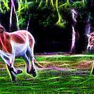 Przewalski's Horse Feels The Earth by miroslava