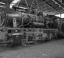 Steam locomotive of the class 55 of German railways-2 by trainmaniac