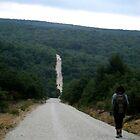 Caminante no hay camino, se hace camino al andar. by noonionplease