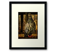 Feathered Finery Framed Print