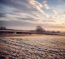 Frosty Mornings by BowBowPhoto