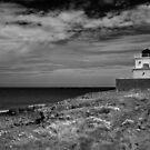 Bamburgh Lighthouse by Rachael Talibart