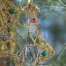 Glitter star by BecQuist