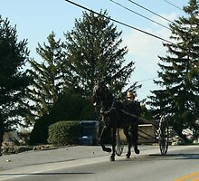 Amish Open Buggy - Lancaster County, PA by Alyssa Passlow