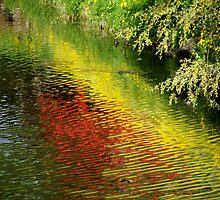 Spring pond by Bluesrose