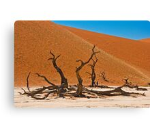 Collapsed giants Canvas Print