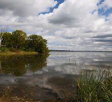 Natural Water Scenic by Lynda   McDonald