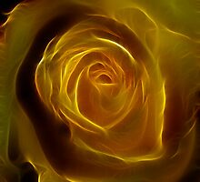 A Rose Of Yellow by Deborah  Benoit