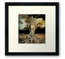 In ego veritas Framed Print
