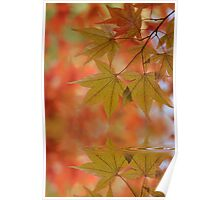 Reflect on Autumn Poster
