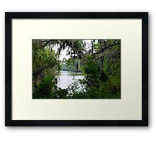 Along The Riverbank Framed Print