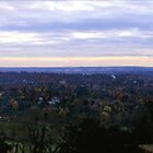 Autumn Reigate Hill Panoramic by Eyeswide
