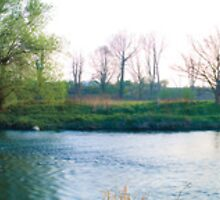 Spring River Mole Panoramic by Eyeswide