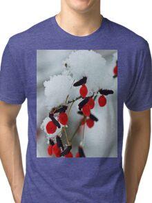 Snowy Red Fruit Tri-blend T-Shirt