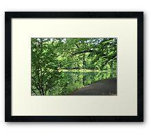Spring Greens Framed Print