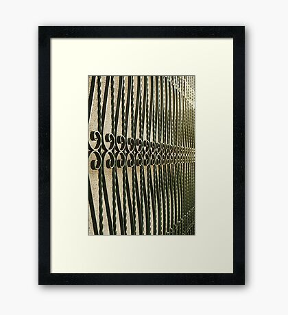 Scrolls and Twists Framed Print