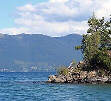 Flathead Lake by Larry Stolle